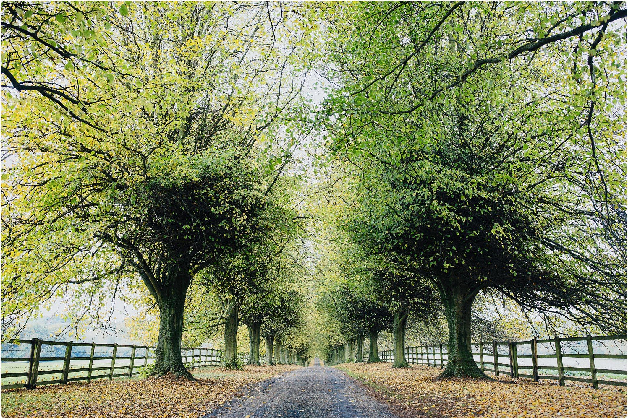 notley abbey wedding driveway