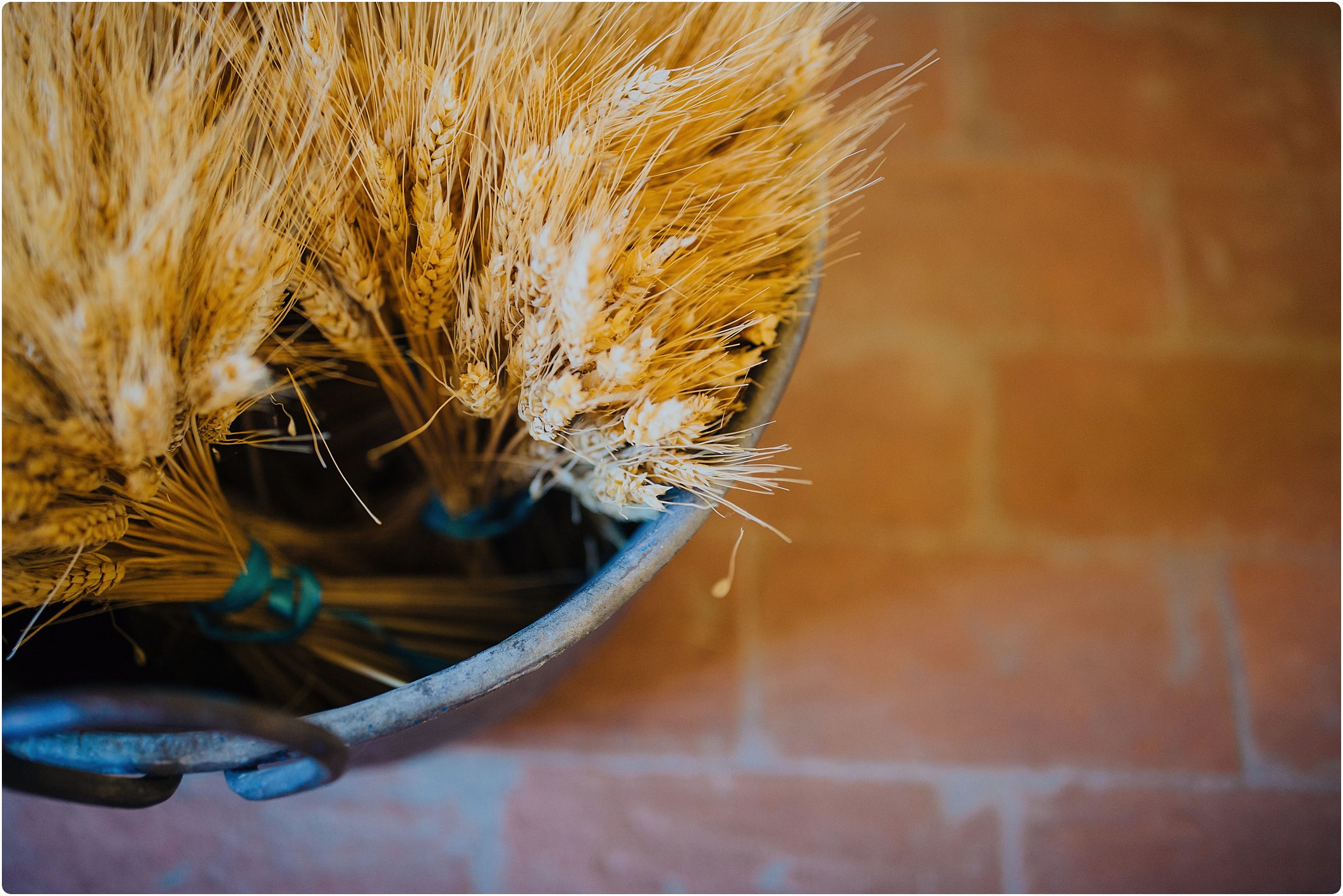 wheat at a tuscan wedding